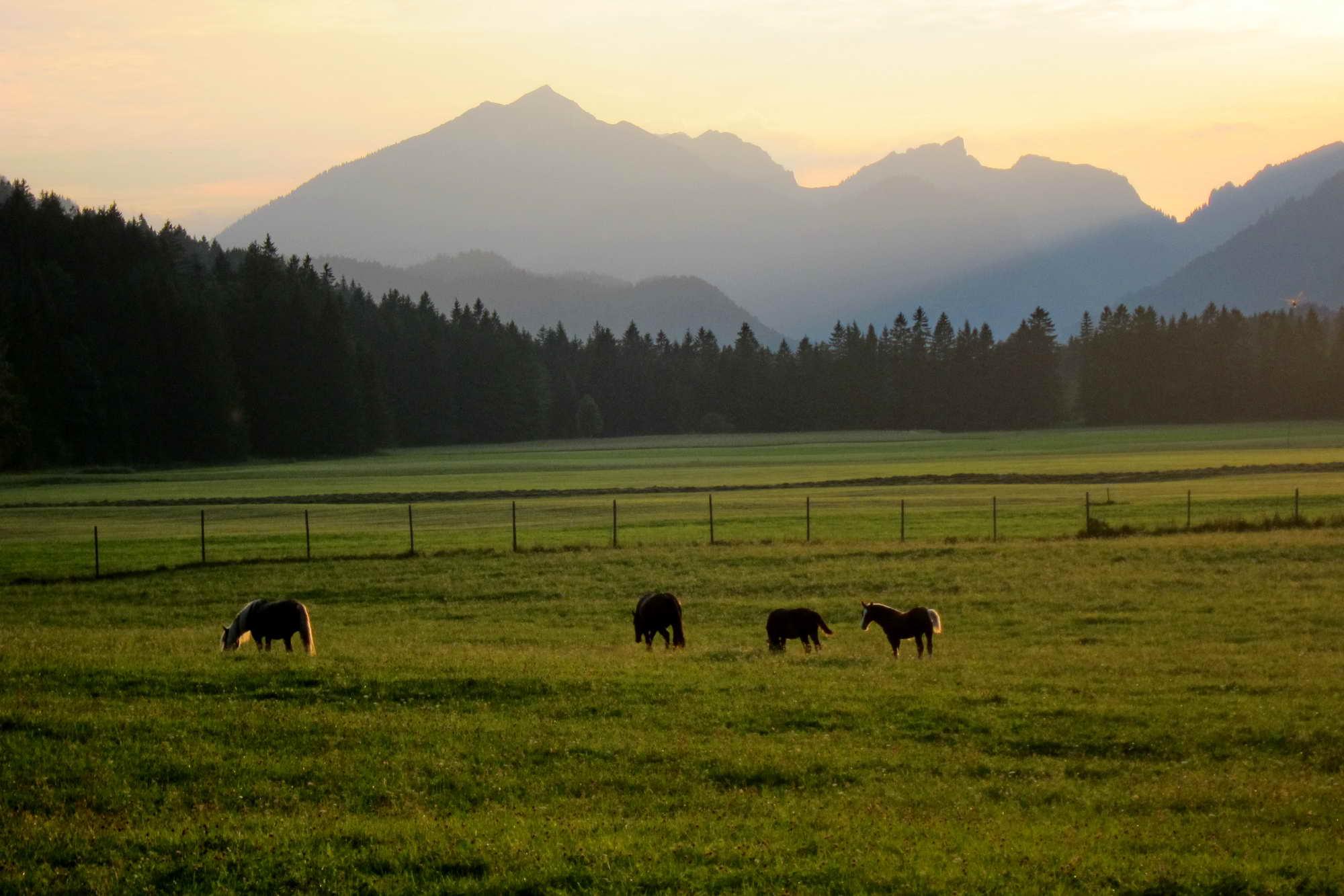 MT 2.3 Garmisch > Graswang (Oberbayern)