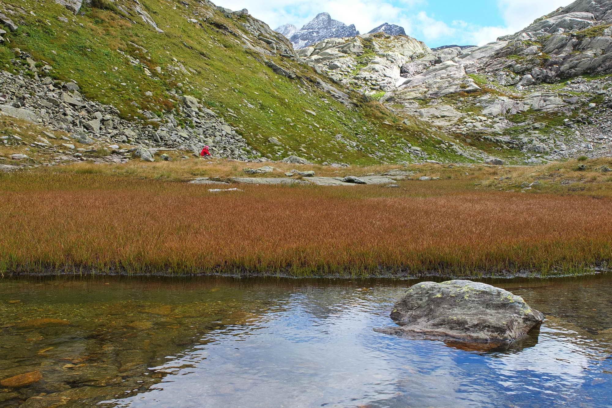 MT 7.1 (Rabius)/Runcahez > Terrihütte (Graubünden)