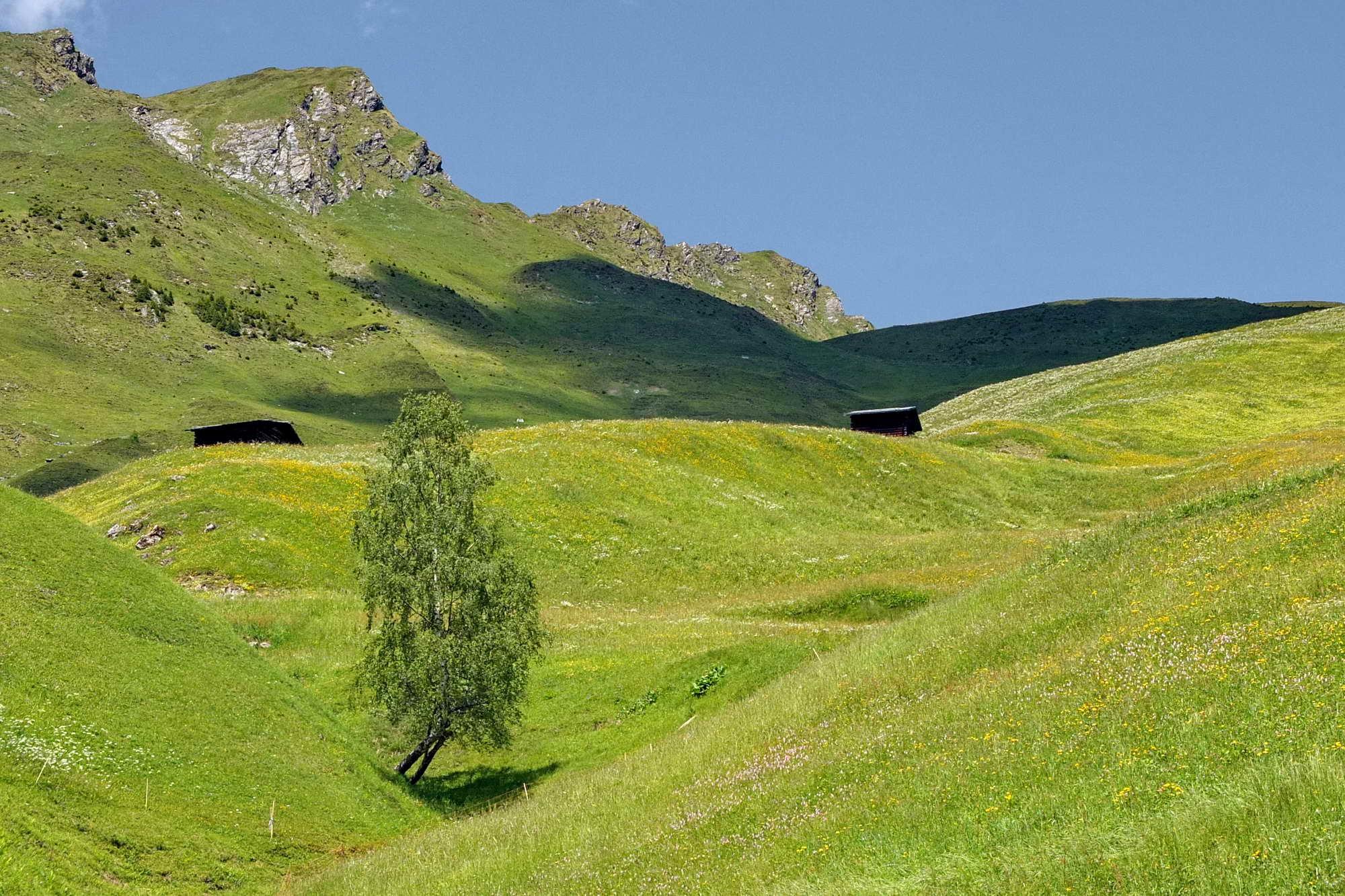 MT 6.6 Safien Platz > Valendas (Graubünden)