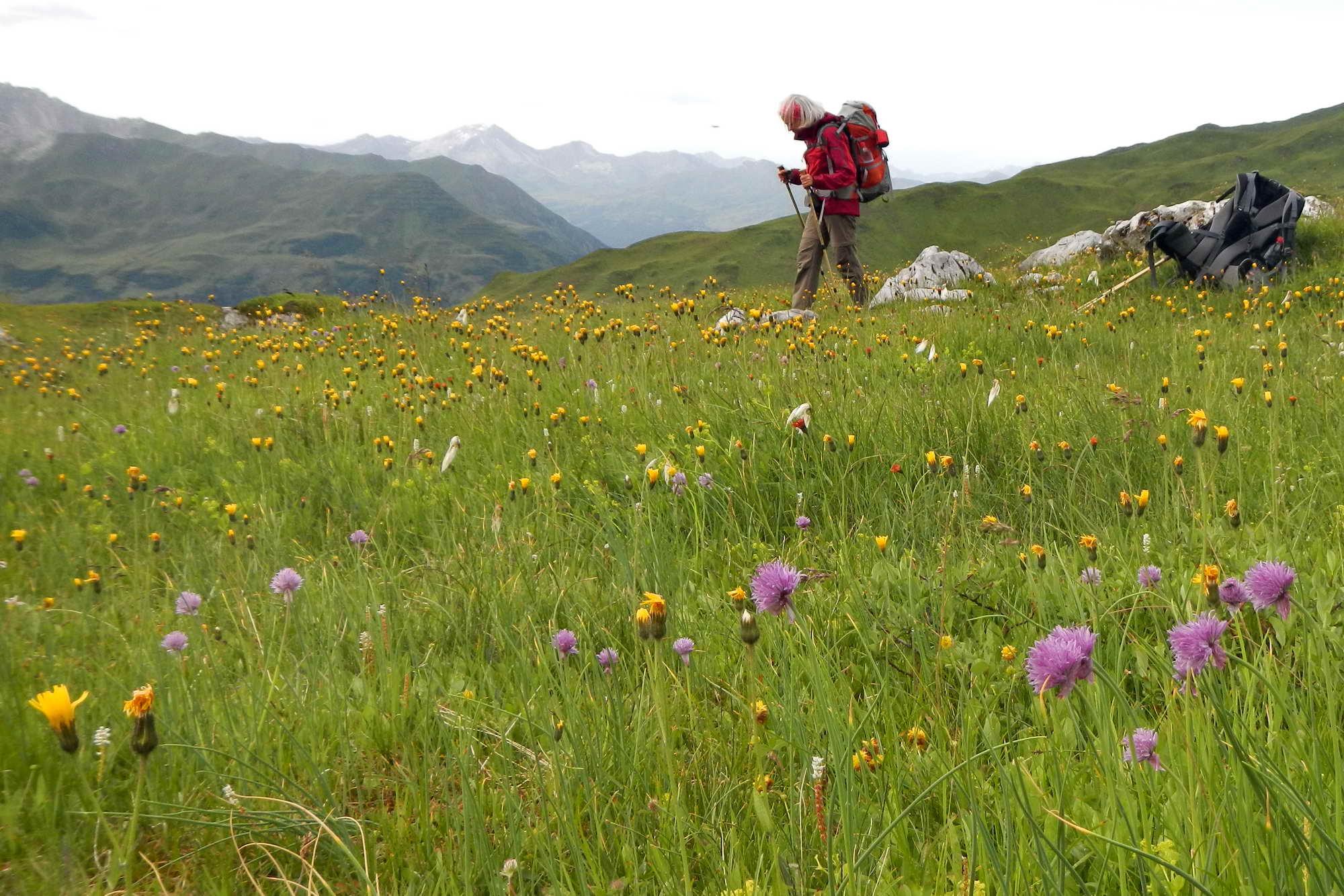 MT 5.3 Carschinahütte > St. Antönien (Graubünden)